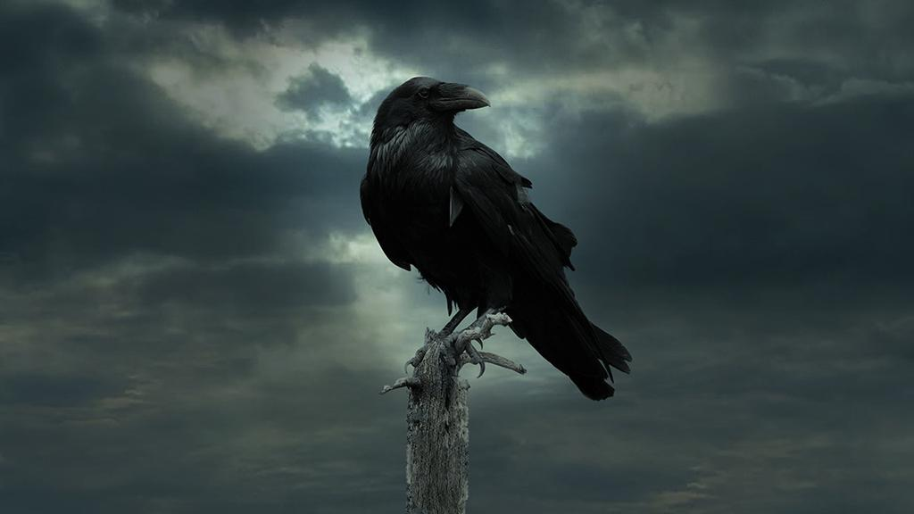 The Three Eyed Raven Sends Its Last Visions Of Sight