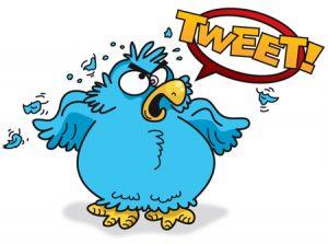 090731_Angry_Twitter_Bird
