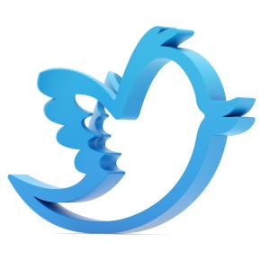 twitter-bird-300x300