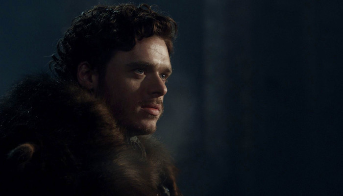 King in the North Robb