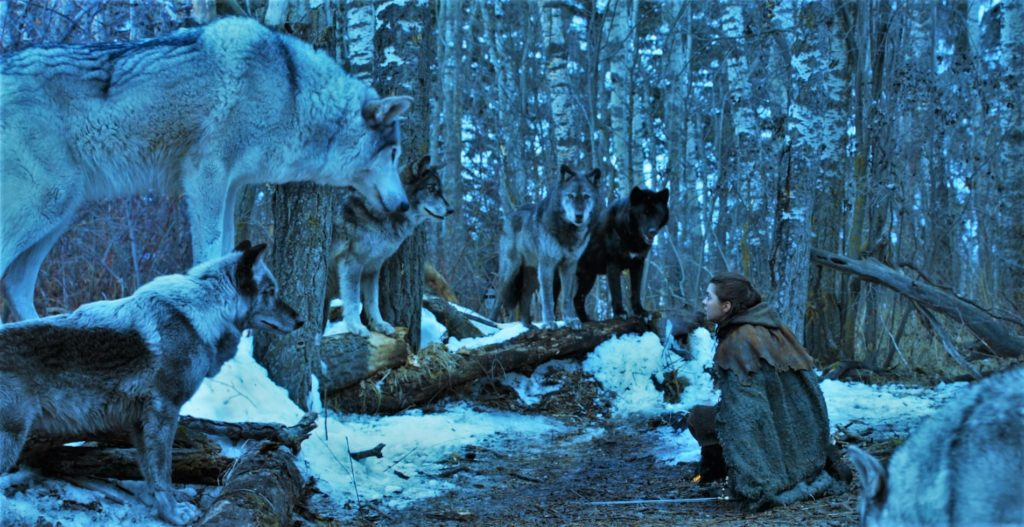 702 - Riverlands, Arya, Nymeria 3