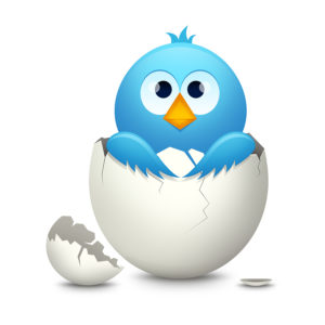bigstock-Blue-bird-in-egg-6079257