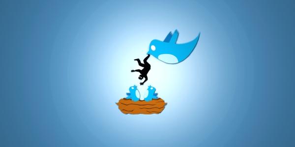 minimalistic-funny-twitter-real-blue-bird-eating-4000x2000-wallpaper_wallpaperswa.com_99