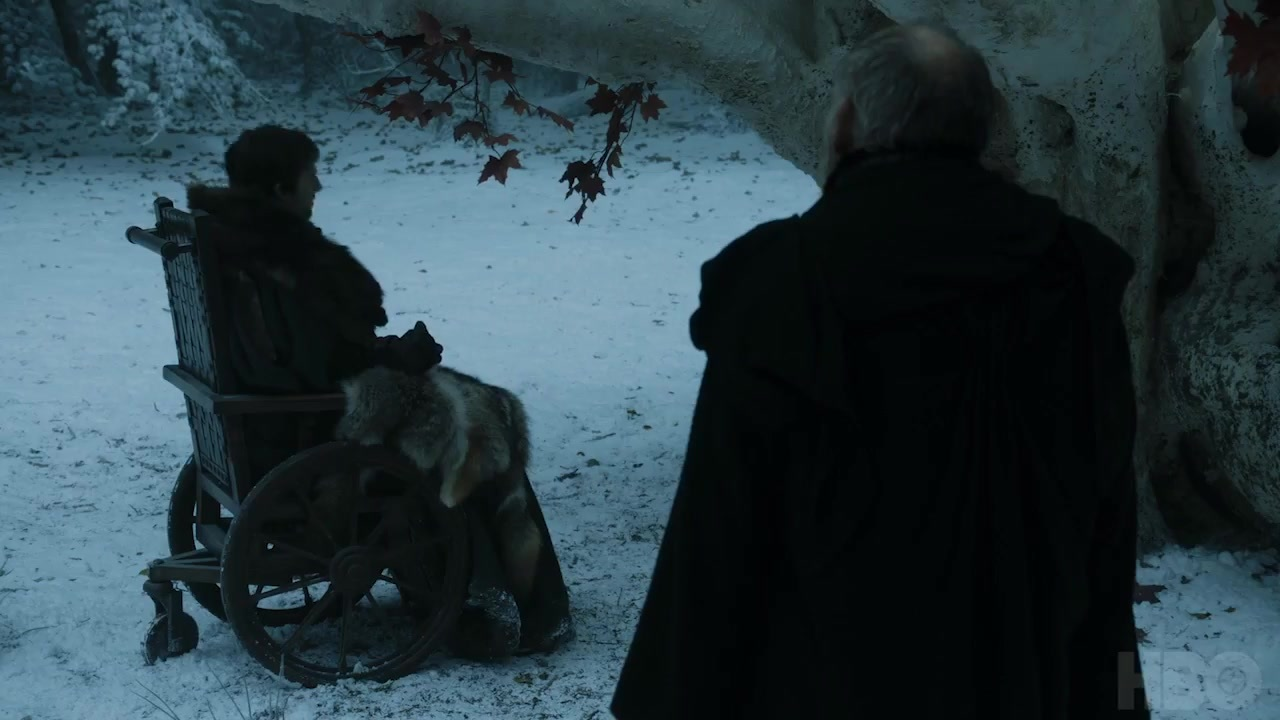 30 Bran wheelchair maester