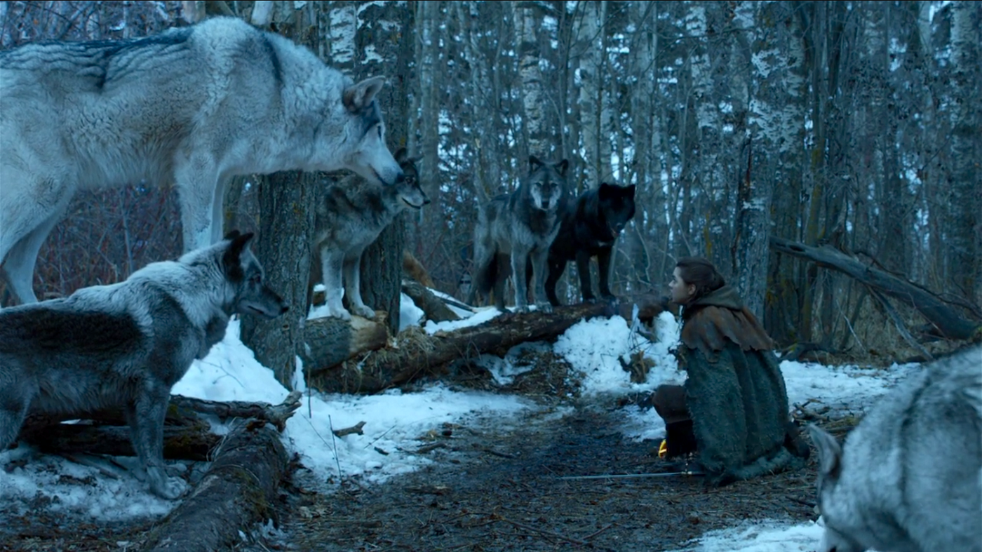 Arya and Nymeria Game of Thrones