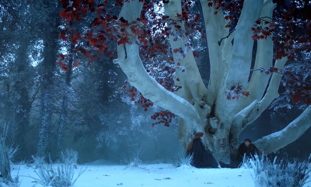 bran weirwood tree