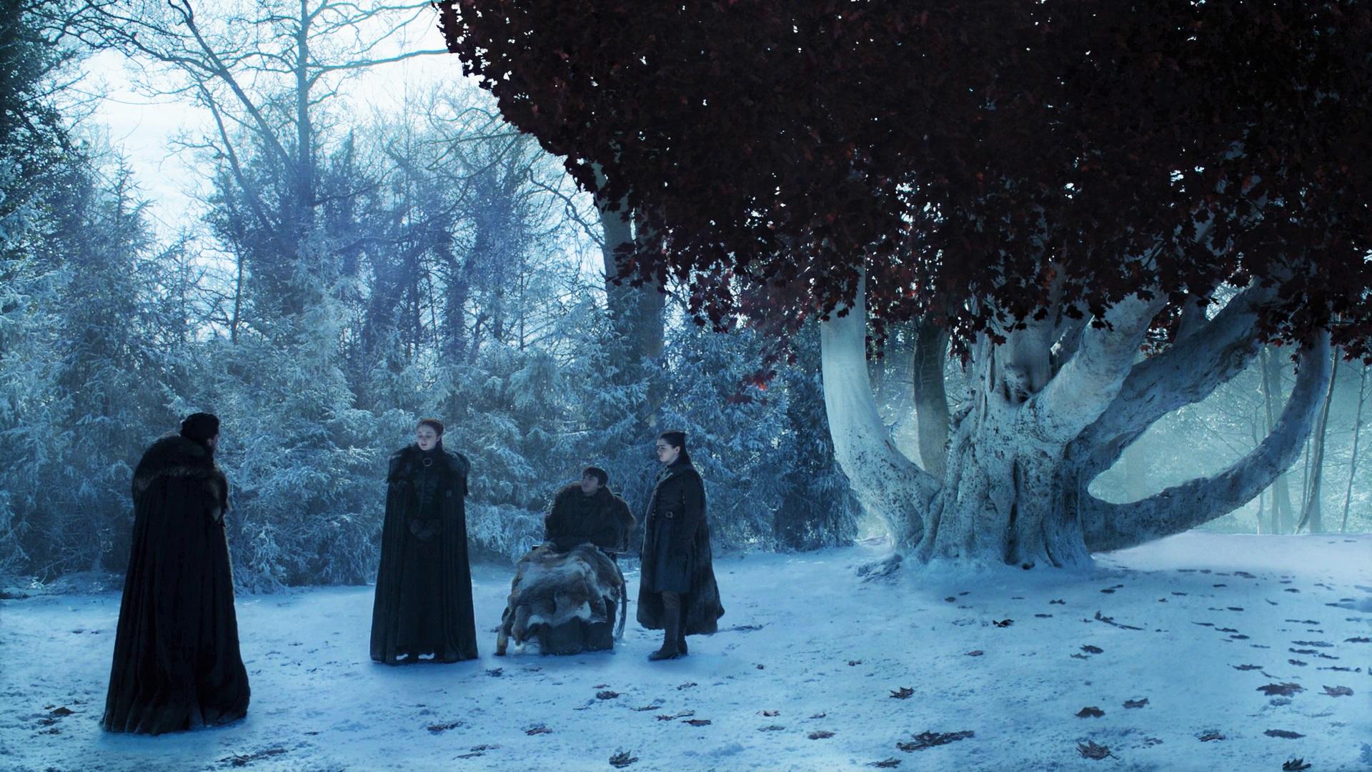 Jon Snow Sansa Stark Bran Arya Godswood Weirwood Season 8 804